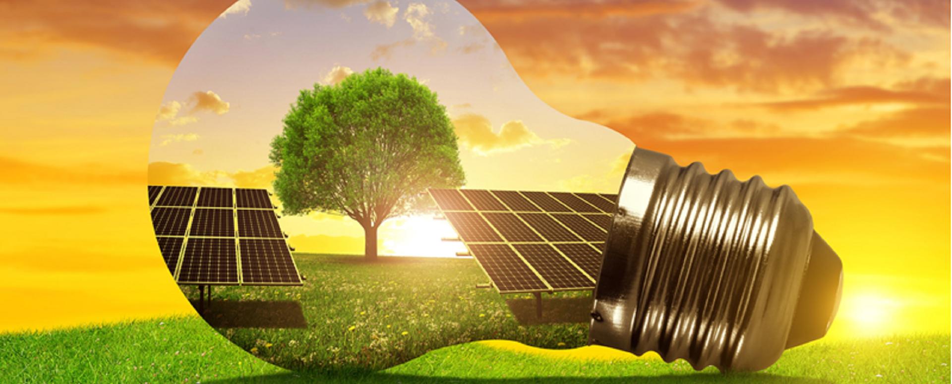 Come performano le imprese più attente alle questioni ambientali?